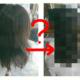 【アブログ見てのご来店】縮毛矯正の知識が美容師レベルのお客様がご来店。ブログ指名のお客様が増えて、阿武隈川が感じること